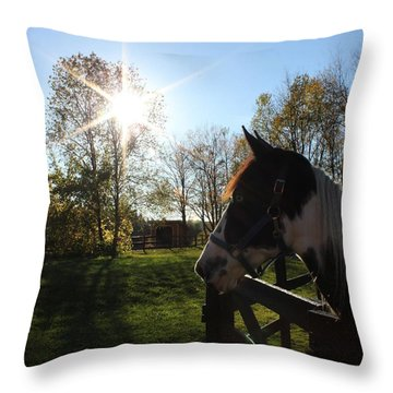 Horse With Sunburst Throw Pillow