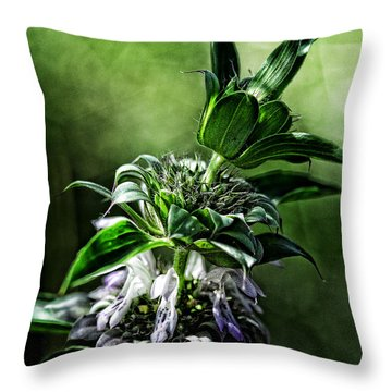 Horsemint Throw Pillow