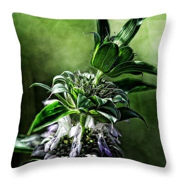 Throw Pillow featuring the photograph Horsemint by Karen Slagle