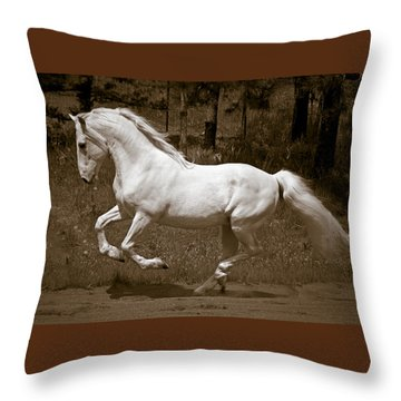 Throw Pillow featuring the photograph Horsepower D5779 by Wes and Dotty Weber