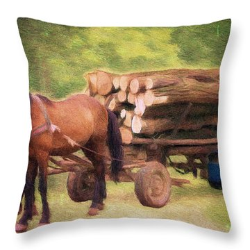 Horsepower Throw Pillow by Jeff Kolker