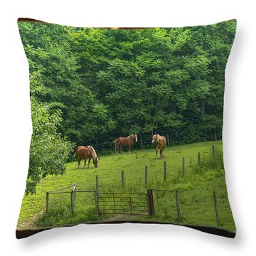 Horses Feeding In Field Throw Pillow by Dan Friend