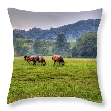 Horses In A Field 2 Throw Pillow by Jonny D