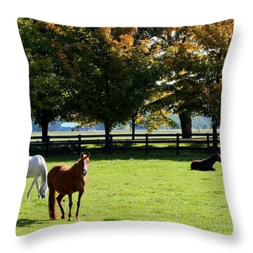 Horses In Fall Throw Pillow