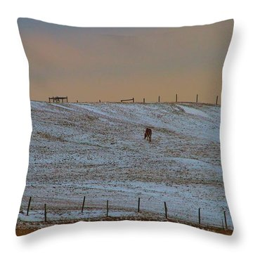 Horses On The Farm In Winter Throw Pillow