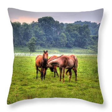 Horses Socialize Throw Pillow by Jonny D