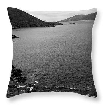 Horseshoe Coast Throw Pillow by Aidan Moran
