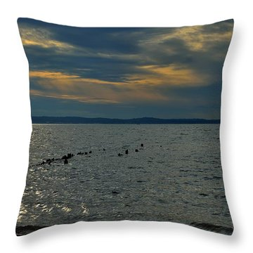 Throw Pillow featuring the photograph Horseshoe Cove Sandy Hook by Steven Richman