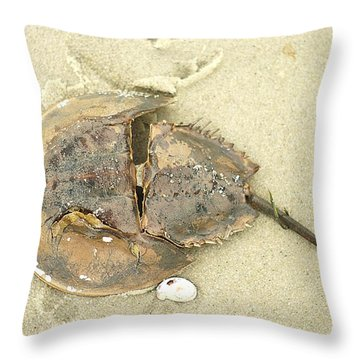 Throw Pillow featuring the photograph Horseshoe Crab On The Beach by Suzanne Powers