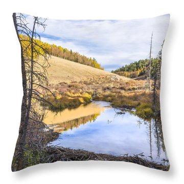 Horsethief Creek Beaver Pond - Cripple Creek Colorado Throw Pillow by Brian Harig