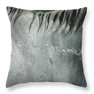 Cooling Down White Horse Throw Pillow