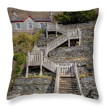Hospital Steps Throw Pillow by Adrian Evans