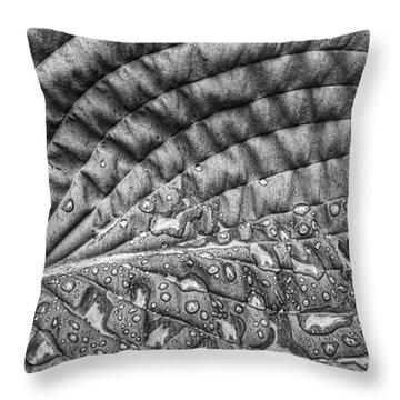 Hosta Leaf Throw Pillow
