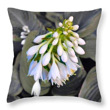 Hosta Ready To Bloom Throw Pillow