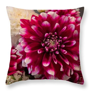 Hot Dahlia  Throw Pillow
