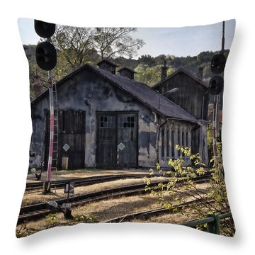 Hot Dry And Dusty Throw Pillow by Joan Carroll