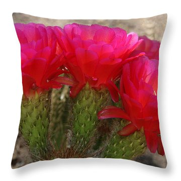 Throw Pillow featuring the photograph Hot Hot Hot by Tammy Espino