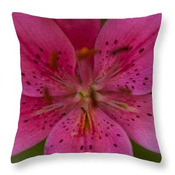 Hot Pink Close Up Throw Pillow by Omaste Witkowski