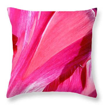 Hot Pink Throw Pillow by Rona Black
