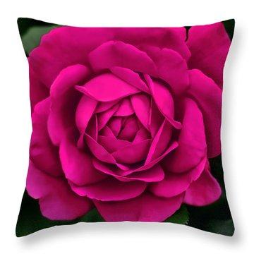 Hot Pink Rose Flower Throw Pillow