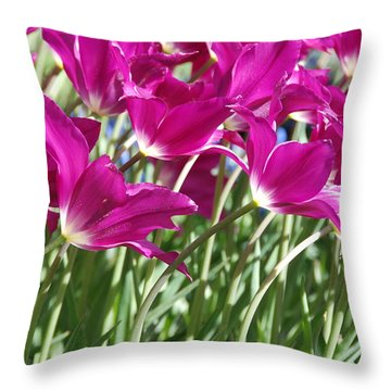 Throw Pillow featuring the photograph Hot Pink Tulips 2 by Allen Beatty