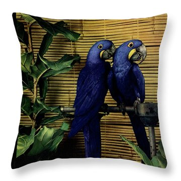 House And Garden Furniture Number Cover Throw Pillow