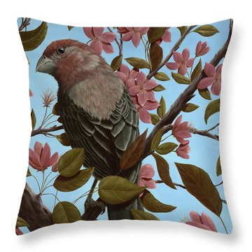 House Finch Throw Pillow by Rick Bainbridge