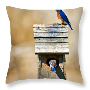 House Hunting Throw Pillow by Lana Trussell