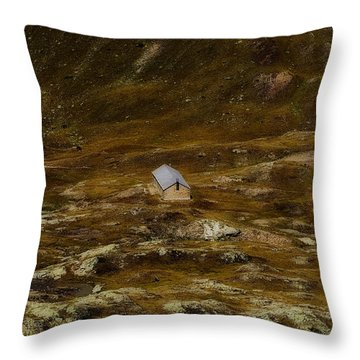 House In The Valley Throw Pillow