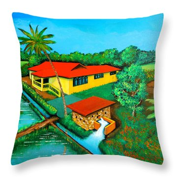 House With A Water Pump Throw Pillow