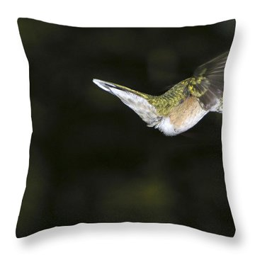 Hovering Beauty Throw Pillow
