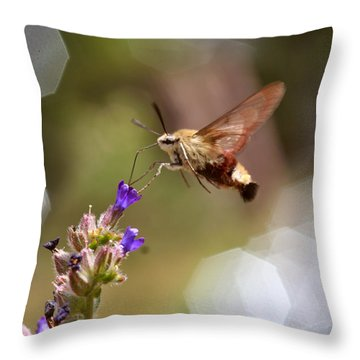 Hovering Pollination Throw Pillow