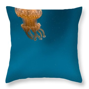 Hovering Spotted Jelly 2 Throw Pillow