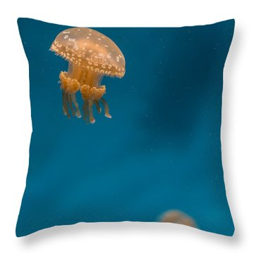 Hovering Spotted Jelly 3 Throw Pillow