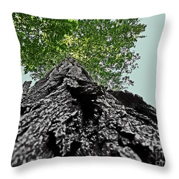 How A Chipmunk Sees A Tree Throw Pillow