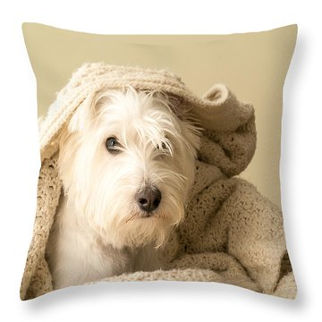 How About A Snuggle Card Throw Pillow by Edward Fielding