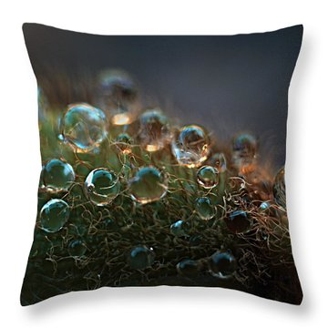 Throw Pillow featuring the photograph How  Bizzahh by Joe Schofield