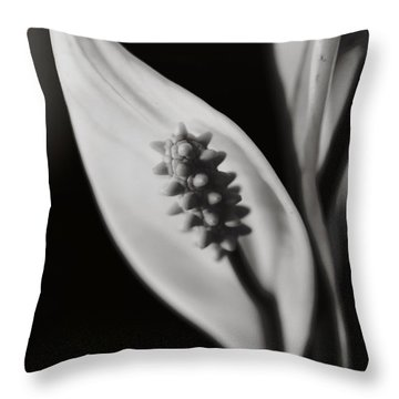 How Can We Let It Slip Away? Throw Pillow by Laurie Search