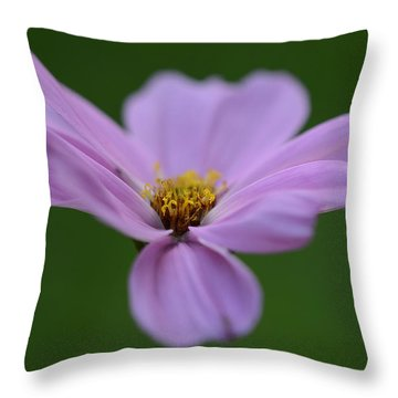How Still They Are... Throw Pillow by Melanie Moraga