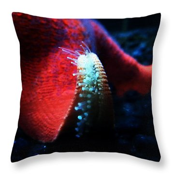 How We Feel The World Throw Pillow by Zinvolle Art