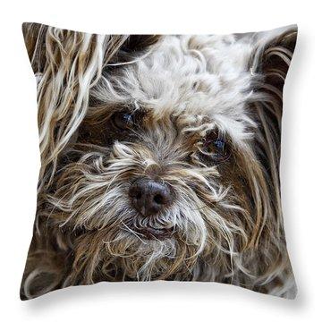 How Ya Doing Throw Pillow by Saija  Lehtonen