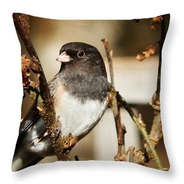 How's This Babe? Throw Pillow by VLee Watson