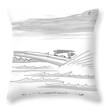 How's This For A Romantic Moonlit Interlude? Throw Pillow