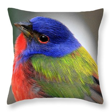 Hows This For Color Throw Pillow