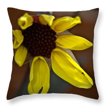 Huangdi Throw Pillow