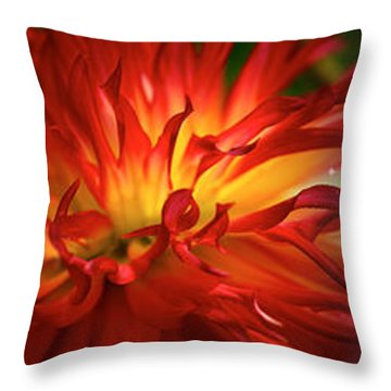 Hubble Galaxy With Red Chrysanthemums Throw Pillow