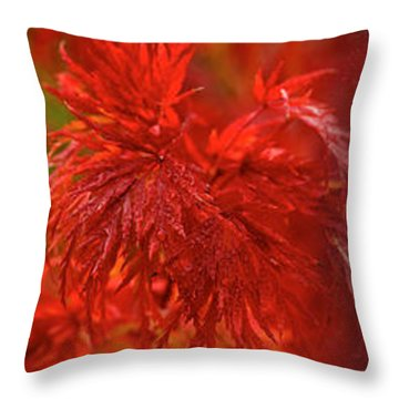 Hubble Galaxy With Red Maple Foliage Throw Pillow