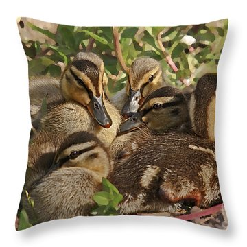 Throw Pillow featuring the photograph Huddled Ducklings by Kate Brown