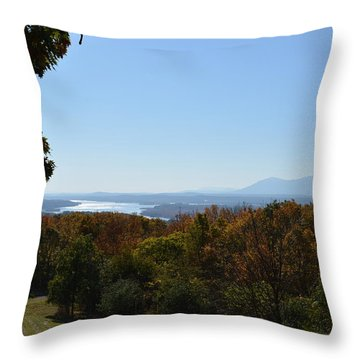 Hudson River View Throw Pillow