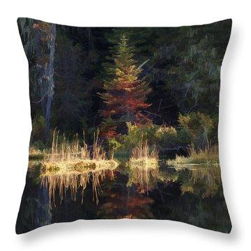 Huff Lake Reflection Throw Pillow